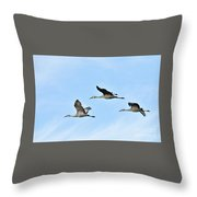 Sandhills In Flight Throw Pillow