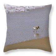 Sandpiper 2 Throw Pillow