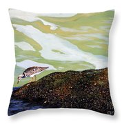 Sandpiper At Ponce Inlet Throw Pillow