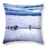 Sandpiper Beach I Throw Pillow