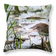 Sandpiper Perched Throw Pillow