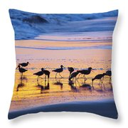 Sandpipers In A Golden Pool Of Light Throw Pillow