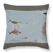 Sandpiper's Mirror Throw Pillow