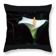 Sandra's Lilly II Throw Pillow