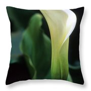 Sandra's Lilly IIi Throw Pillow