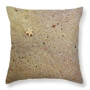 Sands Of Happiness Throw Pillow