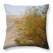 Sands Of Monahans - 2 Throw Pillow