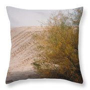 Sands Of Monahans Throw Pillow