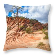 Sandstone Carvings Throw Pillow
