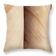Sandstone Columns Throw Pillow