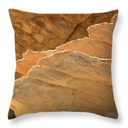 Sandstone Fins Throw Pillow