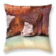 Sandstone Toes In The Virgin River Throw Pillow