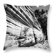 Sandstone Wall Throw Pillow