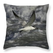 Sandwhich Tern Flies Over Stormy Waves Throw Pillow
