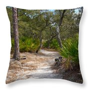 Sandy Path In Hunting Island South Carolina Throw Pillow