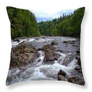 Sandy River Throw Pillow