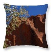 Sandy Rock Throw Pillow