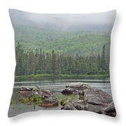 Sandy Stream Pond Throw Pillow