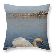 Sandy Water Park 4 Throw Pillow