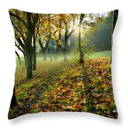 Sandy Water Park 7 Throw Pillow