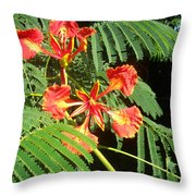 Sanguine Serenity IIi Throw Pillow