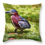 Sanibel Green Heron Throw Pillow