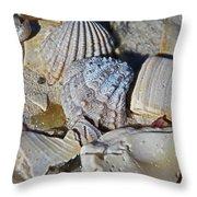 Sanibel Island Seashells Iv Throw Pillow