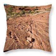 Sanstone Ripples Throw Pillow