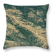 Santa Clara County Real Estate Throw Pillow