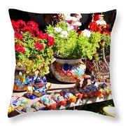 Santa Fe Color Throw Pillow