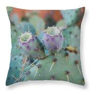 Santa Fe Prickly Pear Cactus Throw Pillow
