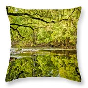 Santa Fe River Throw Pillow