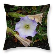 Santa Monica Mountains Sacred Datura Throw Pillow