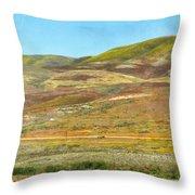 Santa Ynez Mountains Wildflowers Throw Pillow
