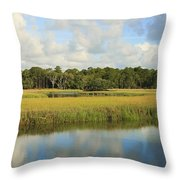Sapelo Marsh Throw Pillow