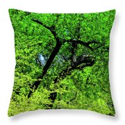 Sapes In Nature Throw Pillow