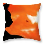Saphira At Sunset Throw Pillow