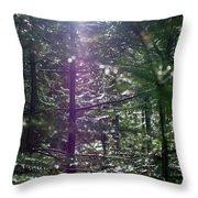 Saplings In The Sun Throw Pillow