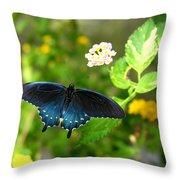 Sapphire Swallowtail Throw Pillow