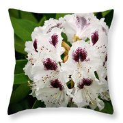 Sappho Rhododendron Throw Pillow
