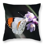 Sara Orange-tip On Wild Hyacinth Throw Pillow