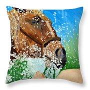 Sara Washes Her Horse Throw Pillow