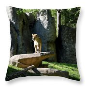 Sarabi Throw Pillow
