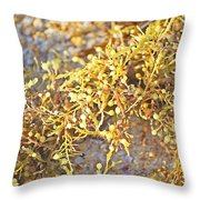 Sargassum Seaweed Throw Pillow