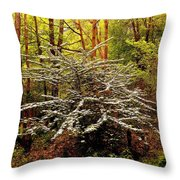 Sargent Crabapple Tree Throw Pillow