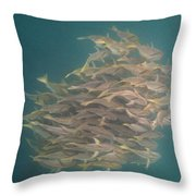 Sargo Throw Pillow