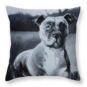 Sasha - The Third  Throw Pillow
