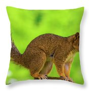 Sass Throw Pillow