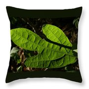Sassafras Throw Pillow