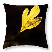 Sassafras Leaf Aglow Throw Pillow